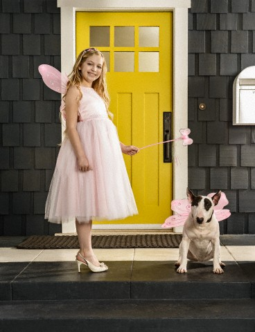 Teenage girl (13-15) and dog dressed as fairies