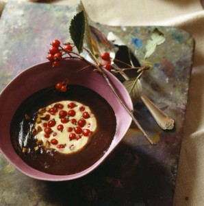 Chocolate and vanilla cream dessert with rose hips