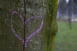 Broken heart drawn on a tree trunk